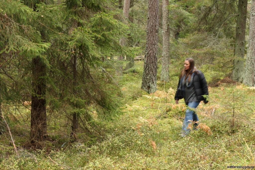 En köttfärsbloggare i skogen.